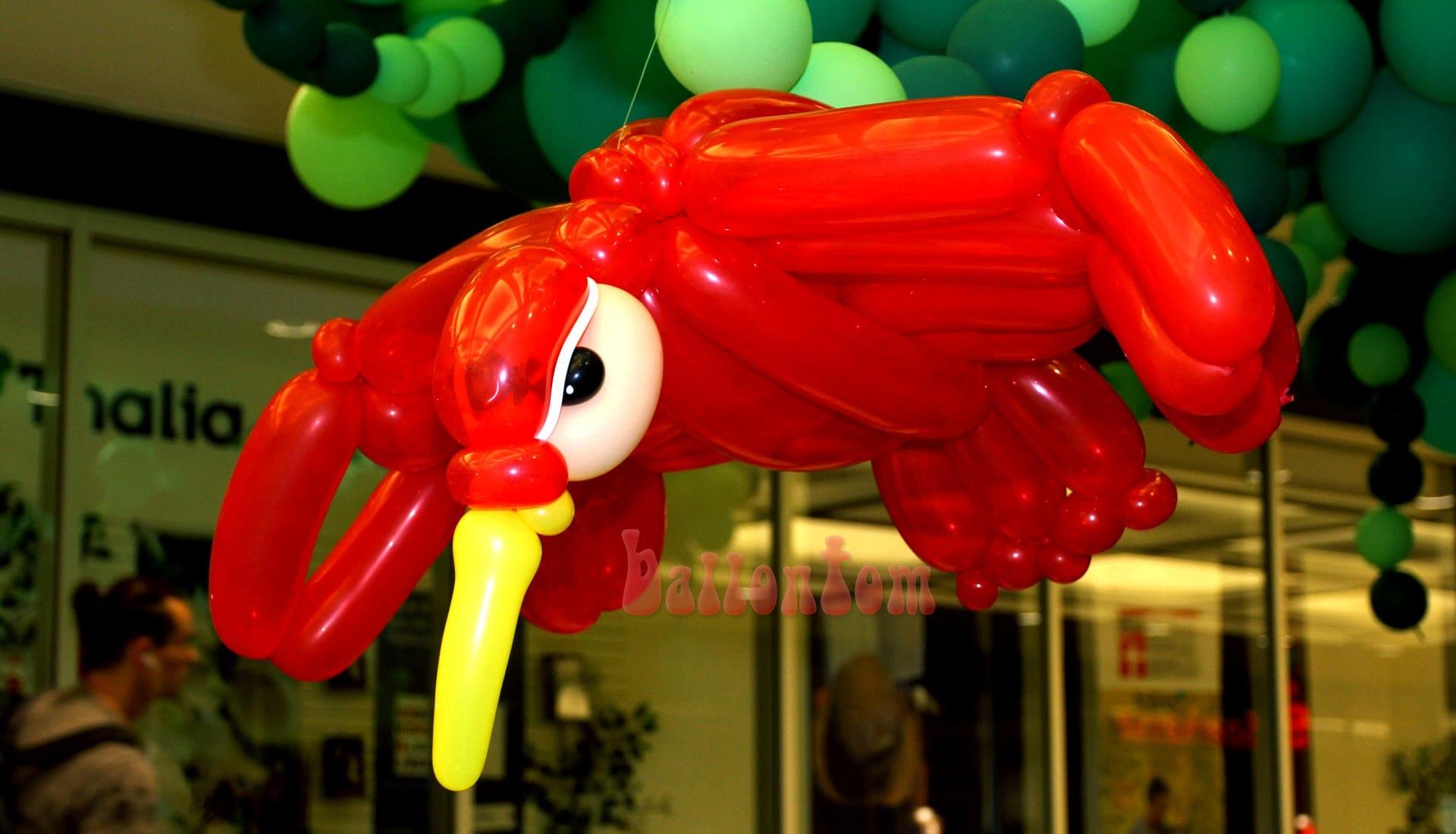 Ballonwelt im Rathauscenter Pankow in Berlin - Moto: Auf Safarie in Pankow - Bild: Paradiesvogel